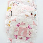 quiltblokken van the fussy cut sampler